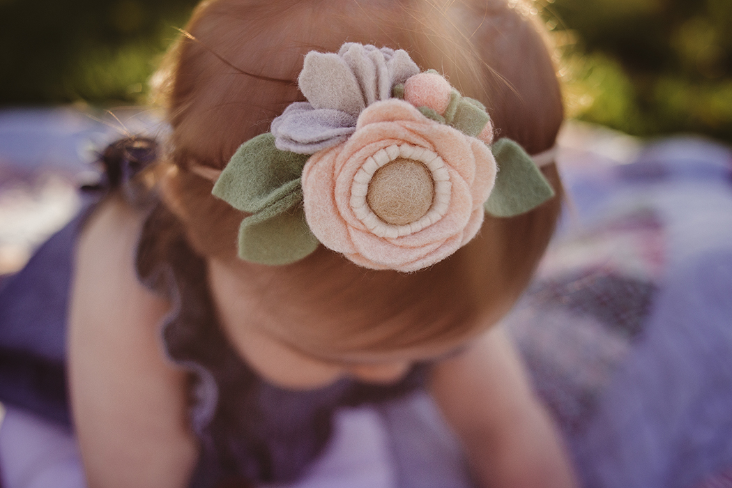 Little Girl Flower Headband, Family Photographer, Fond du Lac, WI